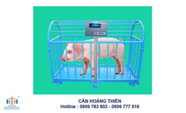 can-gia-suc-co-dien-tu-can-heo-hsc-500kg